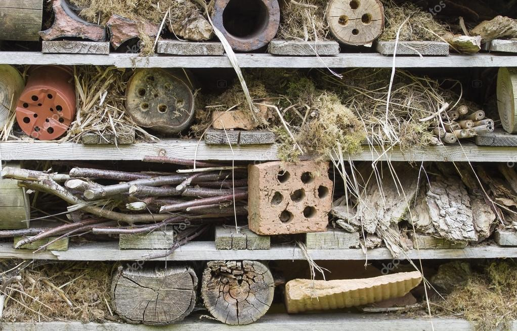 Rustic insect house