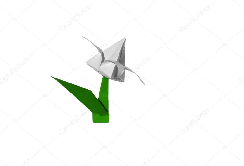 Fleur D Origami Blanc Tulipe Isole Sur Blanc Photographie Chupi