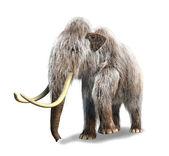 Fényképek fotorealisztikus 3 d visszaadás-ból egy mamut.