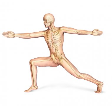 Human male in dynamic posture, with full skeleton superimposed.