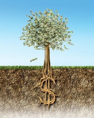 Money tree in soil cross section showing US Dollar sign roots.