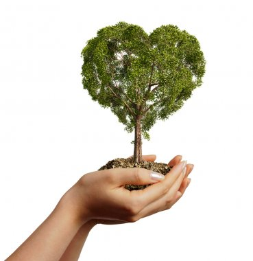 Woman's hands holding soil with a tree heart shaped.
