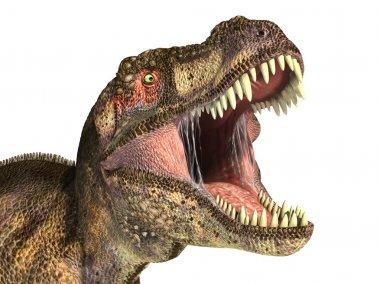 Tyrannosaurus Rex dinosaur, photorealistic representation.