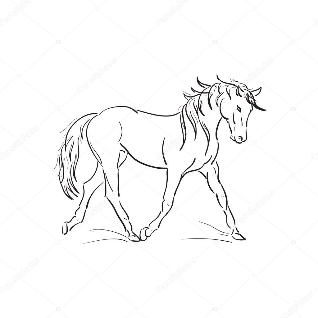 Vector Running Horse Outline Running Horse Vector Outline Stock Vector C Anutaray 28912853