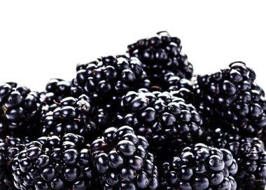 Heap of fresh blackberries