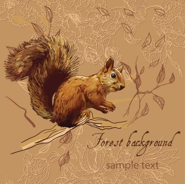 Forest background with squirrel