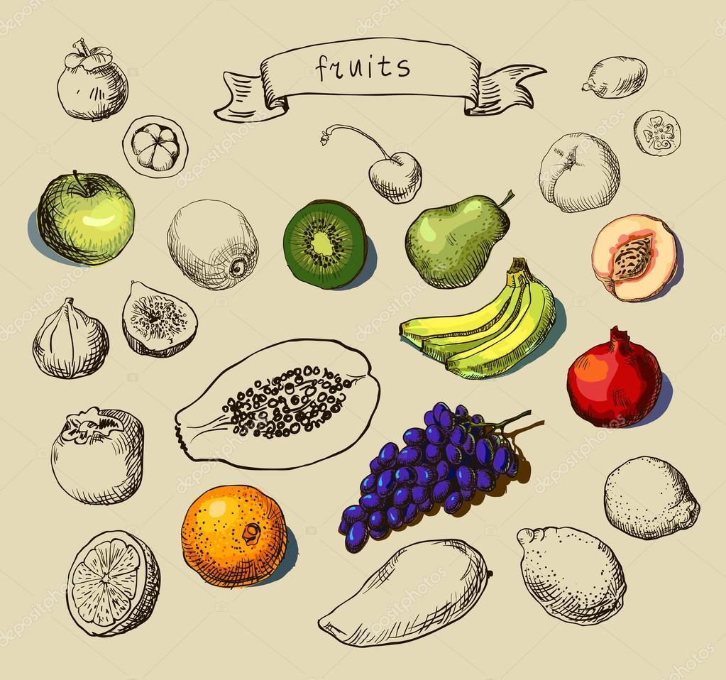 Set of Doodle Fruits