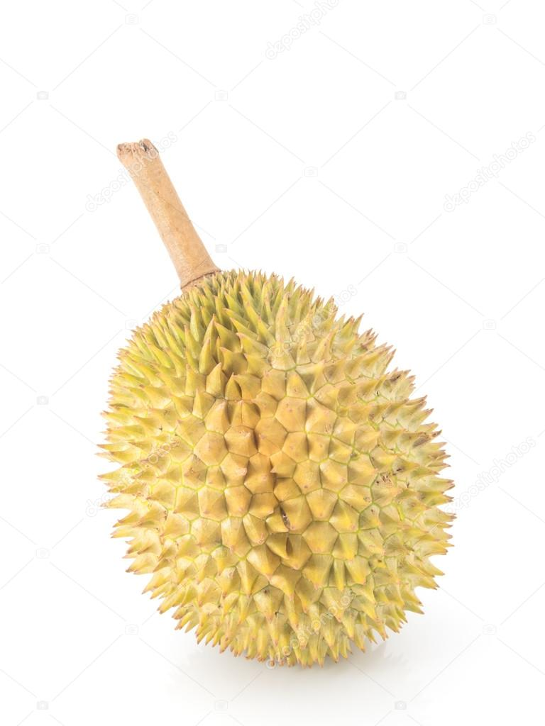 durian king of fruits Curious about custardy and enchanting durian fruits malaysia find out all about the king of fruits and their best rates in malaysia call +60124303866 now.