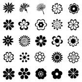 Photo flower vector set