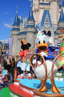 Donald Duck in Disney World