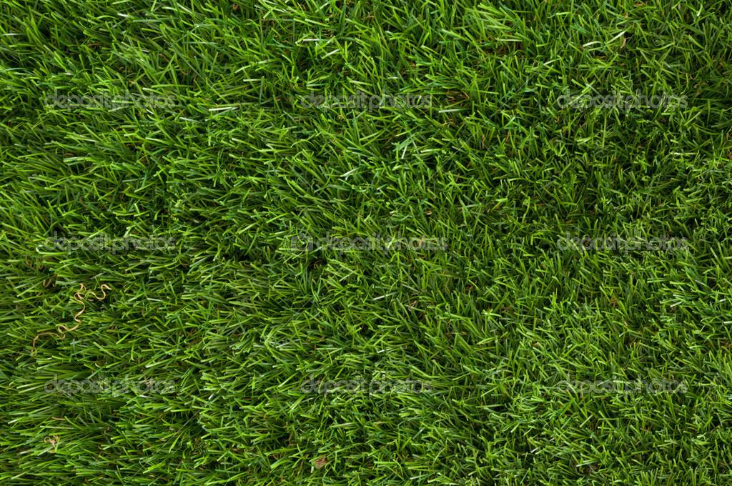草地 — ストック写真 © krayout ...