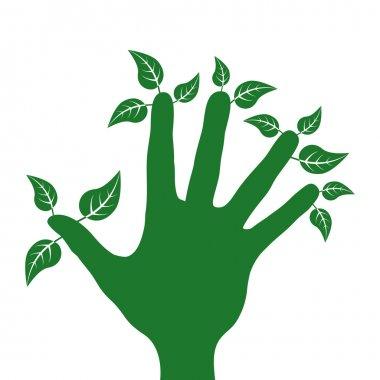 Green fingered gardener