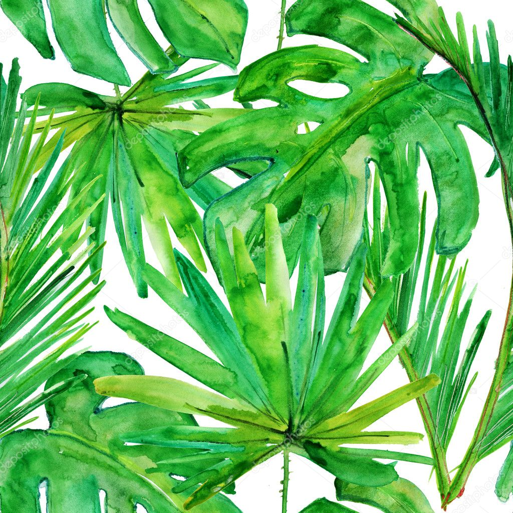 Tropical leaves.