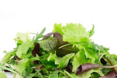 Leaves of lettuce.