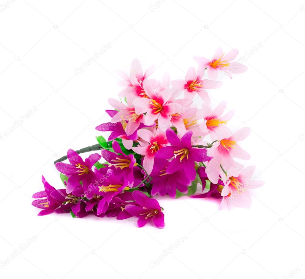 Flower bouquet stock photo indigolotos 49066891 pink and purple flower bouquet isolated on a white background photo by indigolotos izmirmasajfo