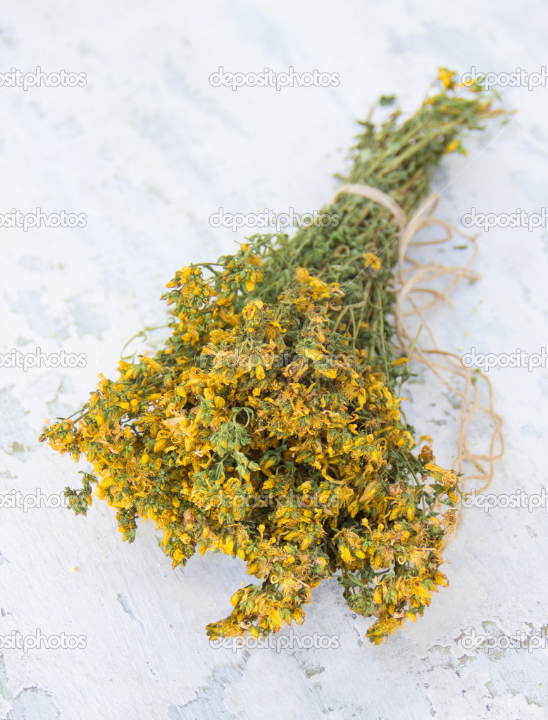 Dried St. John's wort plant on the shabby wooden background