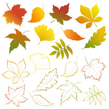 Falling leaves set