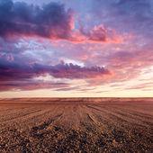 Obdělávané půdy a oblak formace při západu slunce
