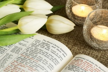 Bible opened and bunch of tulips.