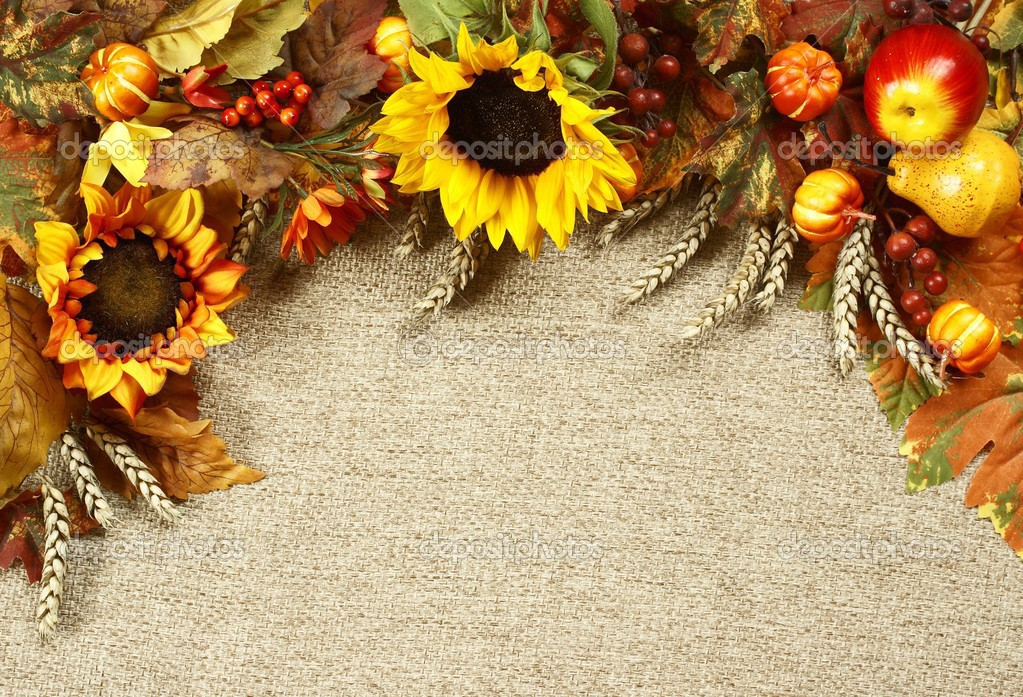 Sunflower Autumn Leaves And Fruits On Burlap Background Stock Photo