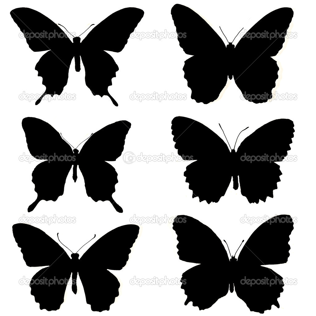 silhouettes of butterflies on a white background u2014 stock photo