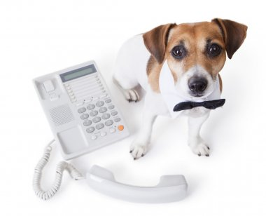 White collar near office phone. call center