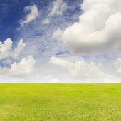 Zelené trávníkové pole a modré nebe