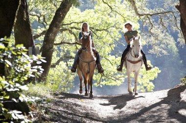 Horseback riders on the trail