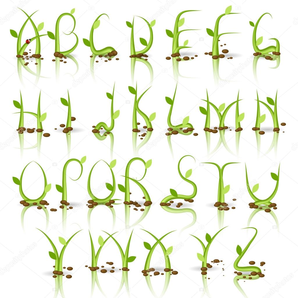 Green plant alphabet with reflection stock photo for Alphabet photo letters