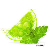 grüne Limette mit Wasserspritzer und Minzblatt
