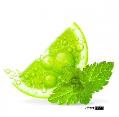 Green lime with water splash and mint leaf
