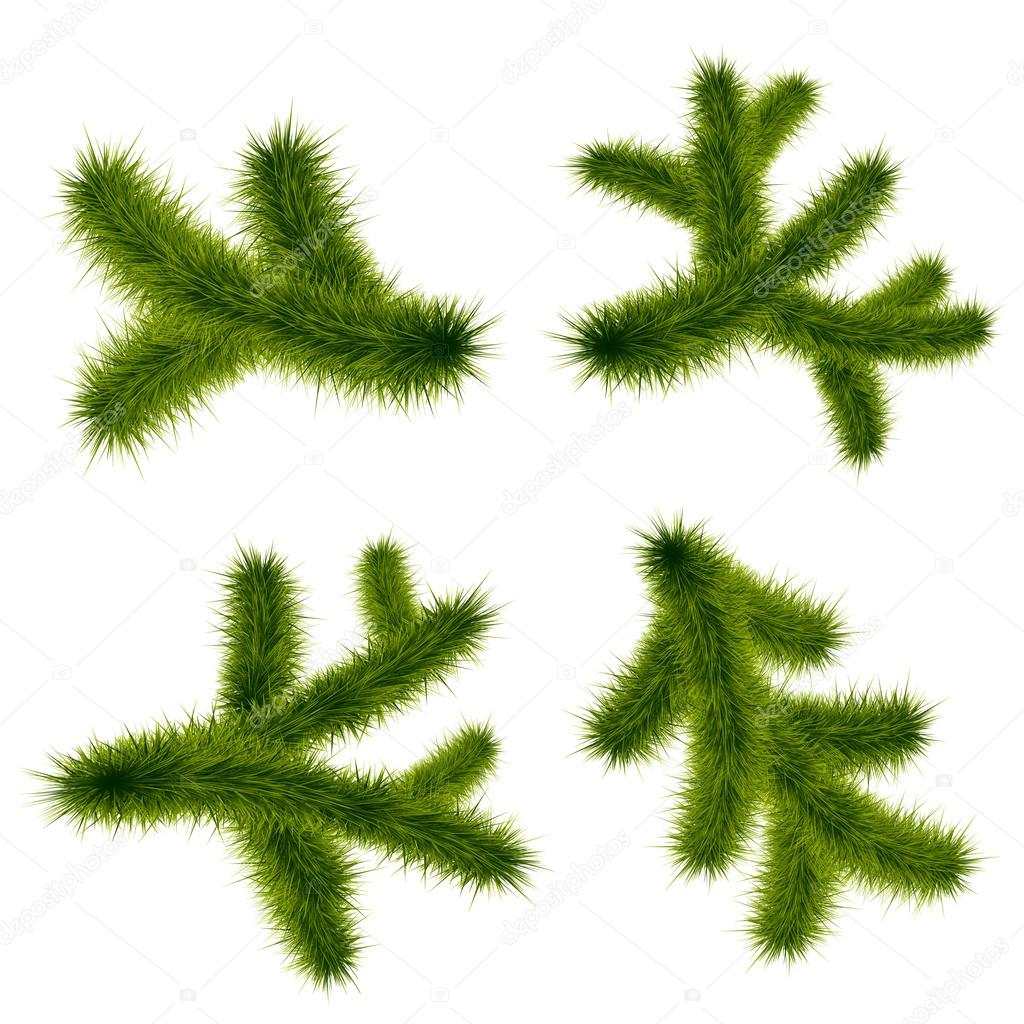 christmas tree branch vector - photo #16