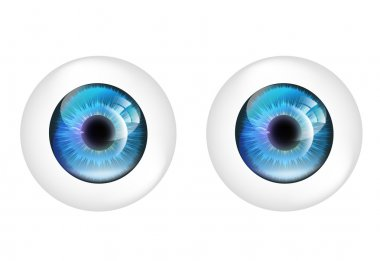 Vector eye balls isolated.