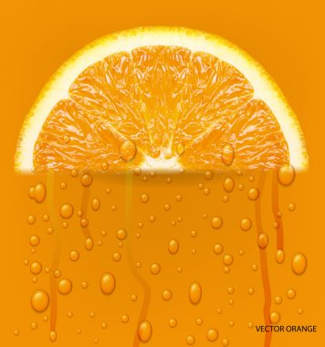 Orange fruit with water drops background. Vector illustration.