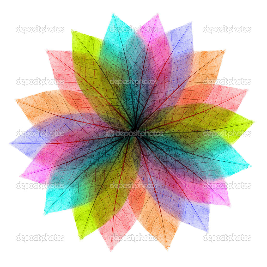Color leaves abstract shape