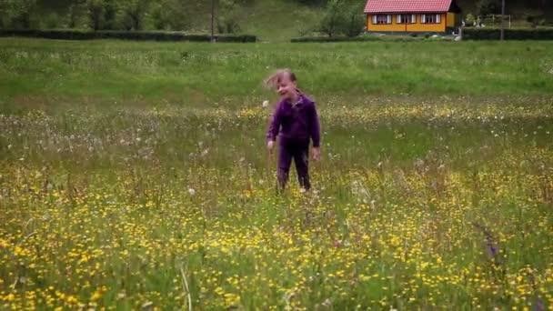 shot z malé děvče runnig louku