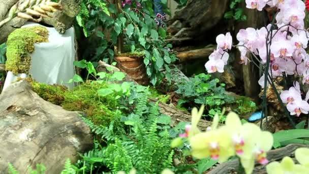 Velká zahrada