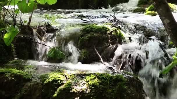 zblízka střílel z vodopádu v lese