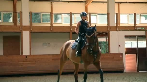velký sál pro školení mladá dívka koni jezdectví