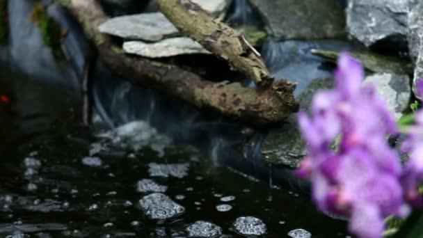 Egy kert virágzó orchidea