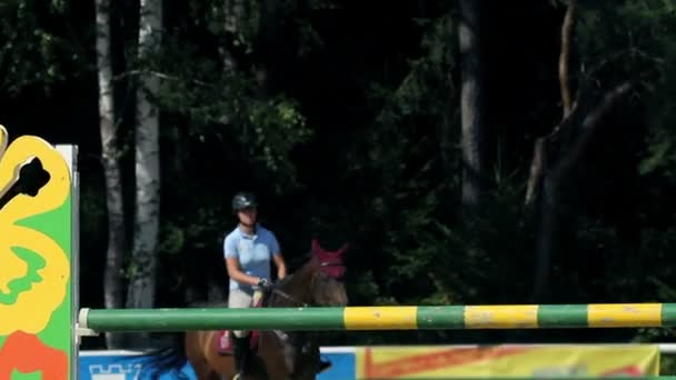 Women jockey learning jumping over obstacles in the nature and preparing for comeptition