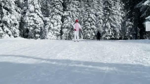 mladistvá dívka těší zimní čas při lyžování