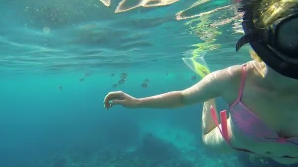 Frau schwimmt auf die Korallen zu