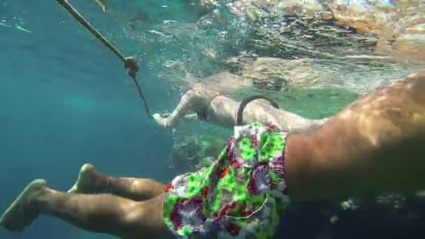 People swimming over corals with fishes in sea