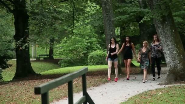 vier schöne Frauen in Stöckelschuhen walkin im park