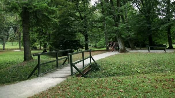 Wide shot of four young women walking in green park