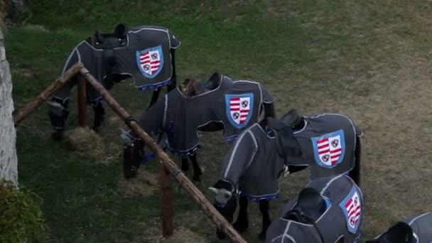 Breite Schuss des Ritters Pferde in der Pferdefütterung mit getrocknetem Gras stabil