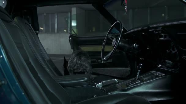 francia bulldog ugrik ki nyílt corvette