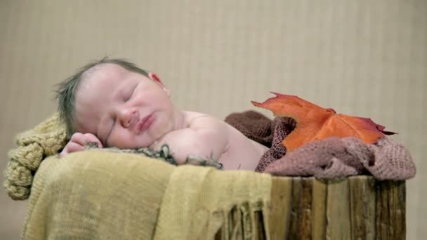 Baby sleeping in an autumn style arranged bed
