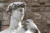 Photo David di Michelangelo